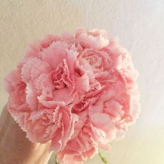 Penny Peonies: How to make peonies from inexpensive grocery store carnations. | Mighty Girl