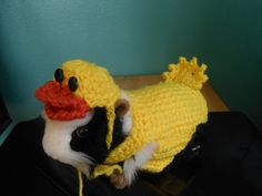 Guinea pig Easter Duck Sweater and Duck Hat  Guinea by Fancihorse