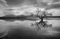 mono,monochrome,black and white,tree, water ,tree,forest,reflection,sunset, sunrise,lake,sunrys, mountain,water,sky,clouds,horizontal, outdoors, nature, landscape,reflections,exterior, europe, photography, landscapes, spain, granada,spring,peace,