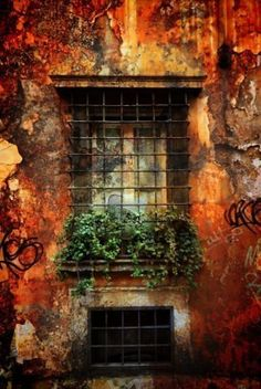 Italian Windowsill, Italy - OK, so it's not ART per se, but I would LOVE to have a painting of this, the colors are gorgeous!