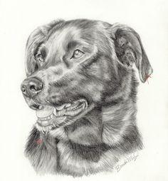 Custom Dog Portrait-Labrador Retriever- Dog Drawing-Pet Portrait in graphite pencil- Pet sympathy- Pet sketch-Dog illustration by PatouPetPortraits on Etsy
