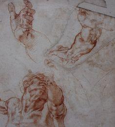 Michelangelo. Estudio para la figura de Adán.