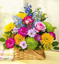 Send summer flowers & gifts this season & give someone a reason to smile! Choose from beautiful summer wreaths to summer flowering plants, and more! Blooming Flowers, Blooming Plants, Summer Flowers, Summer Colors, Flowers Canada, 800 Flowers, Creative Flower Arrangements, Floral Arrangements, Flower Crafts