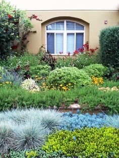 The variety of low-water plant materials complement each other and create a symphony of texture and color throughout the entire garden space.
