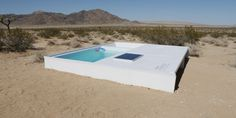 There's A Tiny Pool In The Middle Of The Mojave Desert, And You Can Swim In It