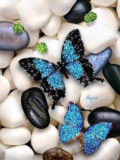Бабочки на камнях