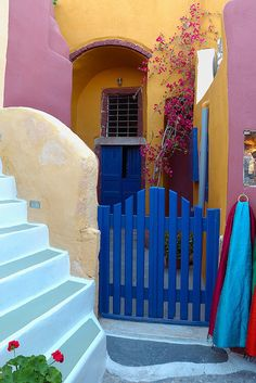 bright colors in Oia, Santorini Santorini Island, Vacation Spots, Vacation Ideas, World Best Photos, Greek Islands, Day Trips, House Colors, Colorful Interiors, Gardens