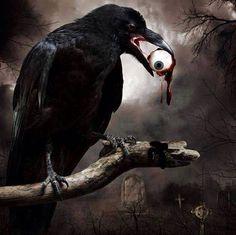 Halloween-Raven eating an eyeball