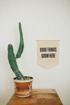 Good Things Grow Here                         – The Bee & The Fox