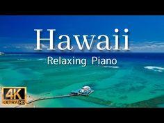 (8) 【寝る前に見るハワイ 4K・3時間】ハワイ、波音とピアノ癒しBGM|空撮4K風景映像|旅行 海|Hawaii piano | Hawaii 4k piano music - YouTube Foto Software, Piano, Hawaii, Youtube, Pianos, Hawaiian Islands, Youtubers, Youtube Movies