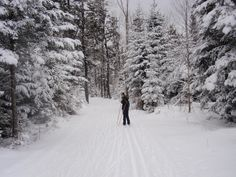 Cross Country Skiing at Bretton Woods Nordic Center http://blog.top-ten-travel-list.com/travel/cross-country-skiing-at-bretton-woods-nordic-center/
