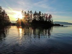 Sunstar Announcing Dusk. This photo of a Sunstar announcing Dusk and the Setting Sun, was taken in a Cove in the Brothers Islands, Frederick Sound, Inner Passage, southeast Alaska. Nature, outdoor, wildlife and landscape scenes photographed by NaturesPix