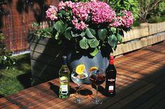 martini garten party outdoor myberlinfashion #aperitifmoment #martinitonic #playwithtime