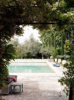 Grape Vine Covered Garden Arch, leading to the Tranquil Pool with Limestone Surround. So Handsome.