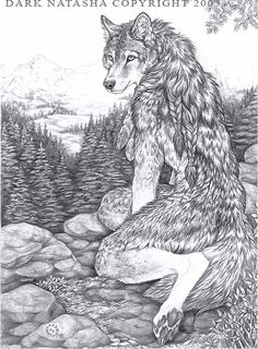 "Mountain Wolf - ""Wolf sitting atop a mountain over looking the valley."""
