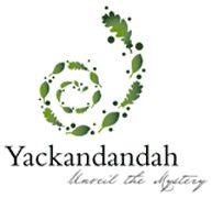 Visit Yackandandah to see where some of my family worked and were born Main Street, Places Ive Been, Bucket, Spaces, Live, Beautiful, Buckets, Aquarius