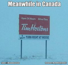 Meanwhile in Canada ( Canadian Memes, Canadian Things, I Am Canadian, Canadian Humour, Canada Jokes, Canada Funny, Canada Eh, Meanwhile In Canada, Funny Quotes