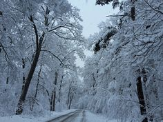 Peisaj de iarna in luna Martie in Sibiu!