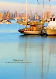 boats-in-San-Diego-marina Muses from leisure. photo of downtown San Diego from Shelter Island