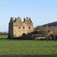 Tickincor Castle - Co Waterford