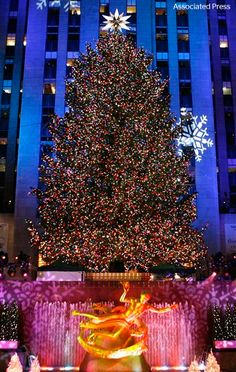 Time to get in the holiday spirit! The Rockefeller Center Christmas tree has been lit for the 80th time.