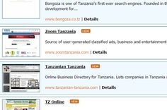 Tanzania Search Engines and Directories