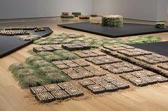 Susan Goethel Campbell - Work - Grounds