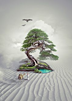 "Popatrz na mój projekt w @Behance: ""tree of Life - Ilustration"" https://www.behance.net/gallery/50593805/tree-of-Life-Ilustration"