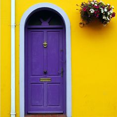 OMG DOOR,  WHAT A COLOR COMBINATION.  LOVE IT
