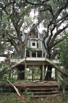 Tree house ~ so sweet. We built my daughter a tree house when she was small...it was so cool we had problems keeping the adults out of it.. If you have never spent and evening in a tree house with your love and a nice bottle of wine. It is a must for the bucket list! Yes!