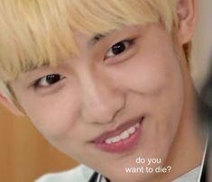 Meme Pictures, Reaction Pictures, Funny Kpop Memes, Dankest Memes, Meme Faces, Funny Faces, Winwin, K Pop, Mamamoo