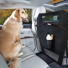 Cool thing to keep your dog on his place in the car :) I was thinking children too lol JK