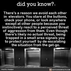 There's a reason we avoid each other in elevators. You stare at the buttons, check your phone, or look anywhere except at other people because you instinctively react to a perceived threat of aggression from them. Even though there's likely no actual. Fun Facts, Awesome Facts, Random Facts, Interesting Facts, Random Things, Random Stuff, Did You Know Facts, Fact Quotes, Why People
