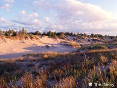 Sandy Dunes at The Pinery Provincial Park, Ontario. Close to our cottage. Winter Camping, Go Camping, Camping Ideas, Ontario Parks, Ontario Travel, Lake Beach, Future Travel, Beach Waves, Great Lakes