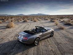 2010 Ford Mustang, Ford Mustang Shelby Gt500, Ford Shelby, Us Cars, Hot Wheels, Dream Cars, Super Cars, Convertible, Vehicles