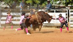 Pure Dust Bullfighters at Chillagoe Rodeo