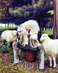 Music Makes Me (And My Sheep) Happy