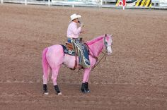 Rodeo- you know what they say about drinking too much and seeing pink elephants but a pink horse? lol