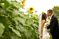 See the rest of Nancy & Casey's modern rustic wedding photos on Poptastic Bride. Photos by Carolyn Scott Photography.