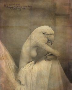 Woman Bird, 1914
