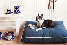 The Pet Shop on OneKingsLane.com