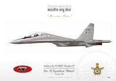 "Indian Air Force Su-30 MKI Flanker H Squadron ""Rhinos"""