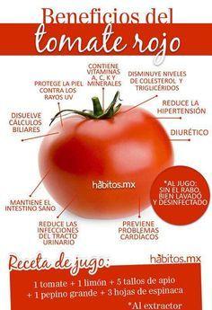 Beneficios del tomate rojo, uno de los mejores antioxidantes que hay  con Habitos.mx #TomateRojo #VidaSaludable #BeneficiosSanos