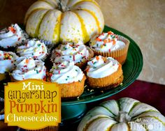 Mini Gingersnap Pumpkin Cheesecakes - Mom On Timeout
