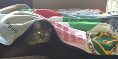 Kitty getting comfy under a Repat blanket! A real story from a Project Repat t-shirt quilt customer