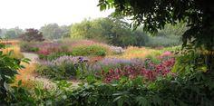 Monumentaal over de grens. Van Amerika tot Japan kennen ze hem. Piet Oudolf, de Nederlandse landschaps- en tuinontwerper, is befaamd om zijn monumentale hand van ontwerpen.