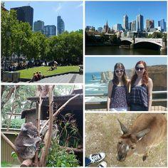 Our first two weeks in Australia - we had an amazing time!   #throwback #firstimpressions #twoweeks #australia #melbourne #melbournelibrary #skyline #princessbride #yarrariver #warrnambool #greatoceanroad #twelveapostles #familytime #roadtrip #travel #exploreaustralia #wildlifeparkballarat #fluffy #kangaroo #koala #cute #friendship #besties #instatravel #aroundtheworld #backpacker #wanderlust #timeofourlife by storyofourlife_96