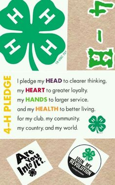4-H...I was in 4-H for many years!