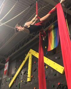 Aerial Hammock, Aerial Hoop, Aerial Arts, Aerial Acrobatics, Aerial Dance, Aerial Silks, Cheerleading Tips, Aerial Classes, Aerial Gymnastics
