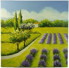 Lavender Fields - 30cm x 30cm